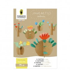 kit creatif diy cactus