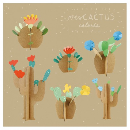 My colorful cactuses